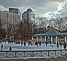 Frog Pond - Boston, MA by Stephen Cross Photography