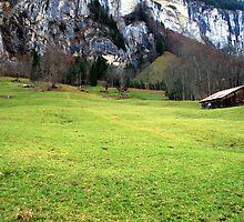 Suisse #10 by Mariya Manzhos