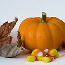 Halloween Still Life by Lita Medinger