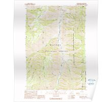 USGS Topo Map Oregon Jaynes Ridge 280321 1990 24000 Poster