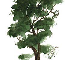 Little Tree 126 by Sean Seal