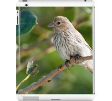 Morning Companion iPad Case/Skin