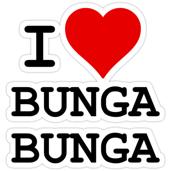I Love BUNGA BUNGA by Brother Adam