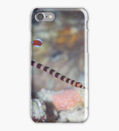 Naia Pipefish iPhone Case/Skin