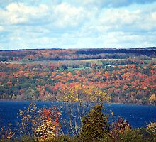 Autumn in the Finger Lakes by Tina Longwell