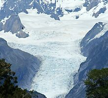 fox glacier, south westland, nz by rina  thompson