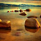 Tahoe Moods by Barbara  Brown