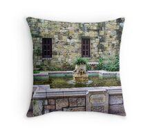 Davy Crockett Fountain - The Alamo Throw Pillow