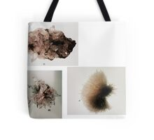 Milwaukee Public Museum crystals Tote Bag