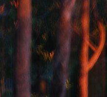 Sentinals by Michelle  Wrighton