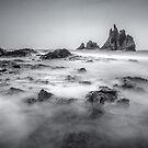 Playa de Benijo by Zoltán Duray