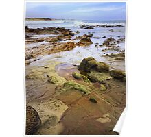 low tide at the rock shelf Poster