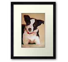 Young Red Framed Print