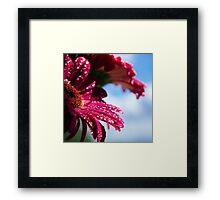 Bejewelled Framed Print