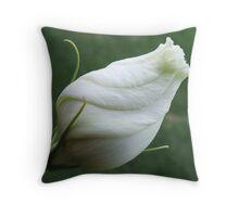 Vanilla Twist Throw Pillow