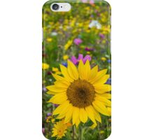 Sunflower And Wildflowers iPhone Case/Skin