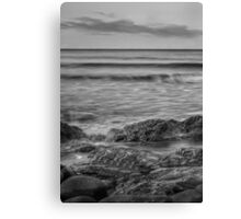 saltwater Canvas Print