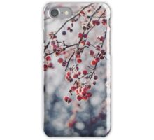 That temporary land of Winter. iPhone Case/Skin