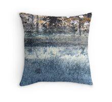 Winter Reflections Throw Pillow