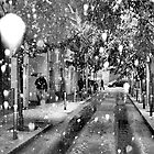 Prodigal snow by danimac