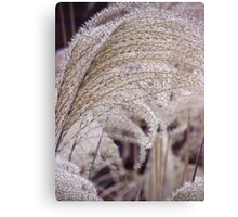 GROWING GRASSES GRACIOUSLY GREETING Canvas Print