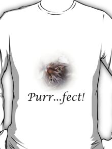 Cute Tabby Cat Purr...fect!  T-Shirt