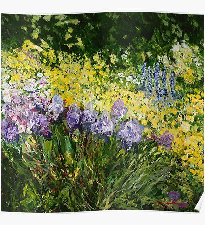 Sunshine Blossoms Poster