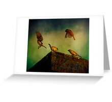 Brawling Birds Greeting Card