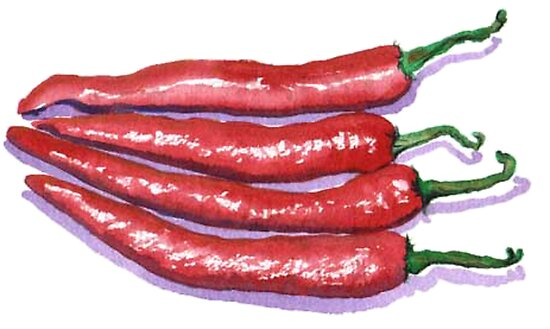 Red Hot Chilis by Yvonne Carter