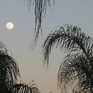 Full Moon Before Sunset by Debbie Robbins
