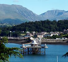 Bangor Pier by Terry Greenwood
