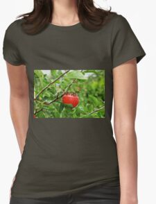 Greedy Pests - Get off my apples.  Womens Fitted T-Shirt