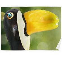 Pepper-Toco Toucan Poster