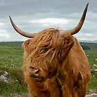 The Beast of Rannoch Moor by Alf Myers