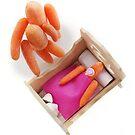 A TRUE 'Baby Carrot'. by Vanessa Dualib