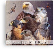 birds of prey poster Canvas Print