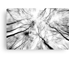 Winter Winds Canvas Print