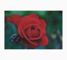 Everyone loves a beautiful Rose Kids Tee
