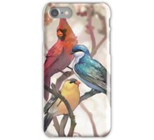 Birds iPhone Case/Skin