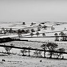 Slices of winter # 8 by clickinhistory