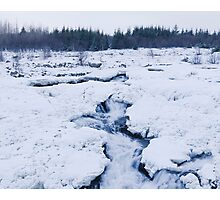 Cold Raw Nature Photographic Print