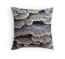 TURKEYTAILS 1 Throw Pillow