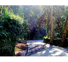 Sintra, welcome to paradise 241..sintra portugal.. Photographic Print