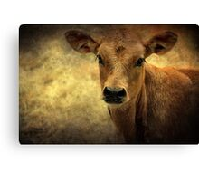 ~  Say Cheese! ~ Canvas Print