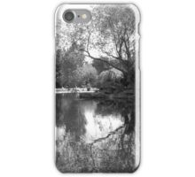 St. Stephen's Green - Ireland iPhone Case/Skin