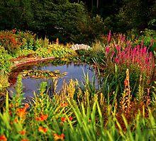 Delgatie Castle Pond (near Turriff, in Aberdeenshire, Scotland) by Yannik Hay