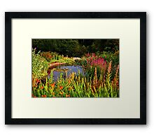 Delgatie Castle Pond (near Turriff, in Aberdeenshire, Scotland) Framed Print
