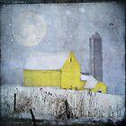 Old Yellow Barn by dawne polis