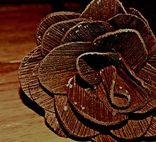 Forever Is A Long Time.. Hence The Wooden Rose.. by KayleeWalter