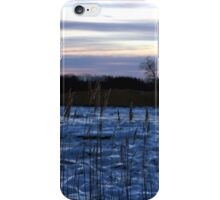 Buckhorn Pond Before Dawn iPhone Case/Skin